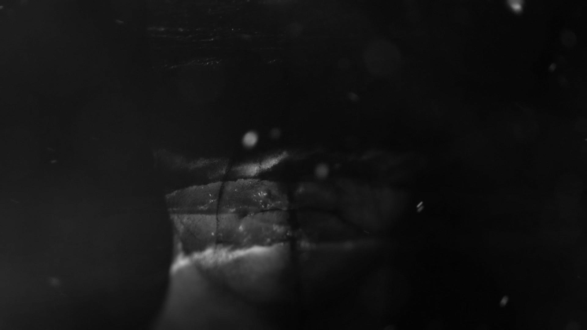 Avicii Summer Tour 2016